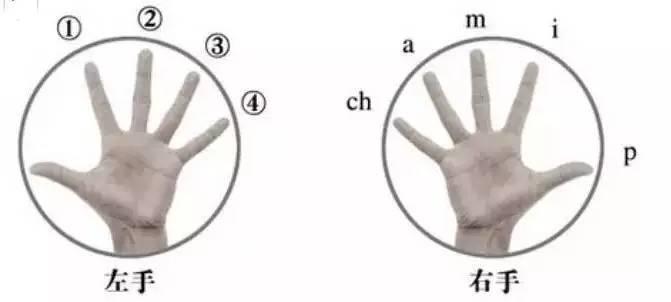关于爬格子,这里有篇详细的指法练习指南2.jpg
